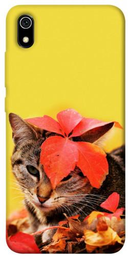 Чехол itsPrint Осенний котик для Xiaomi Redmi 7A
