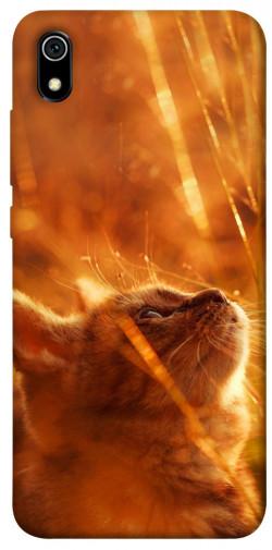 Чехол itsPrint Magic cat для Xiaomi Redmi 7A