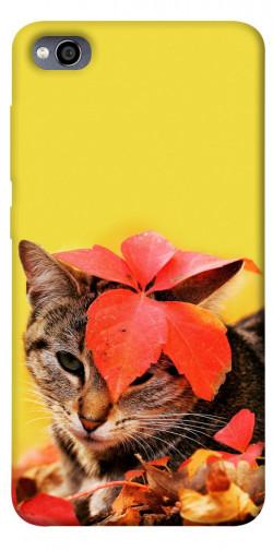 Чехол itsPrint Осенний котик для Xiaomi Redmi 4a
