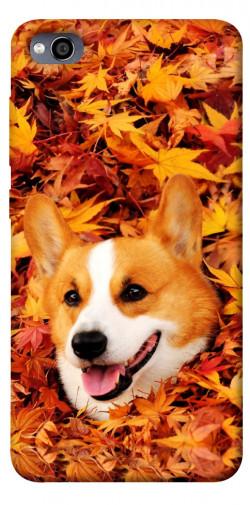 Чехол itsPrint Корги в листьях для Xiaomi Redmi 4a