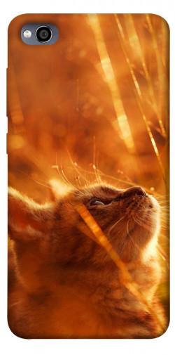 Чехол itsPrint Magic cat для Xiaomi Redmi 4a