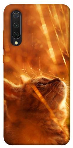 Чехол itsPrint Magic cat для Xiaomi Mi CC9 / Mi 9 Lite
