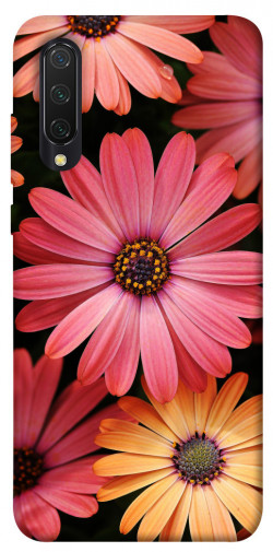 Чехол itsPrint Осенние цветы для Xiaomi Mi CC9 / Mi 9 Lite