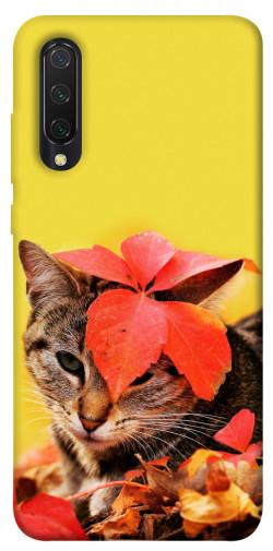 Чехол itsPrint Осенний котик для Xiaomi Mi CC9 / Mi 9 Lite