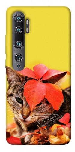 Чехол itsPrint Осенний котик для Xiaomi Mi Note 10 / Note 10 Pro / Mi CC9 Pro