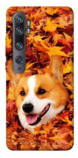 Чехол itsPrint Корги в листьях для Xiaomi Mi Note 10 / Note 10 Pro / Mi CC9 Pro