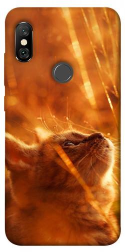 Чехол itsPrint Magic cat для Xiaomi Redmi Note 6 Pro