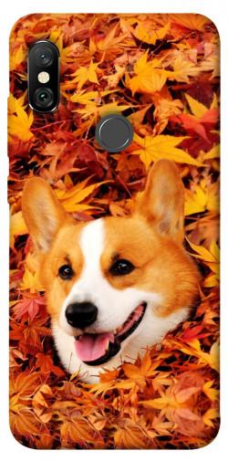 Чехол itsPrint Корги в листьях для Xiaomi Redmi Note 6 Pro