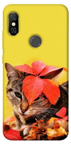 Чехол itsPrint Осенний котик для Xiaomi Redmi Note 6 Pro