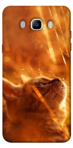 Чехол itsPrint Magic cat для Samsung J510F Galaxy J5 (2016)