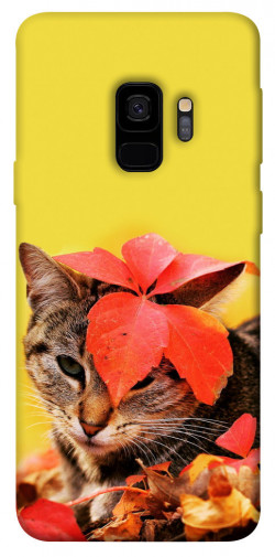 Чехол itsPrint Осенний котик для Samsung Galaxy S9