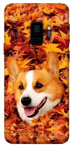 Чехол itsPrint Корги в листьях для Samsung Galaxy S9