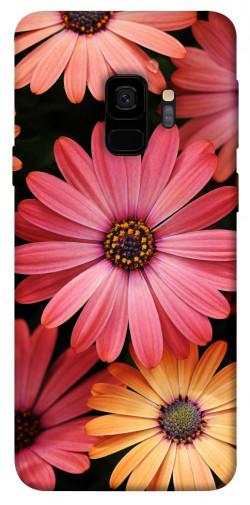 Чехол itsPrint Осенние цветы для Samsung Galaxy S9