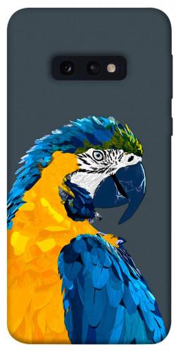 Чехол itsPrint Попугай для Samsung Galaxy S10e