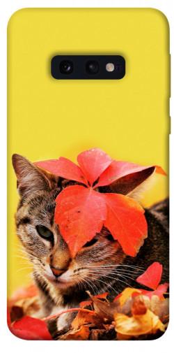 Чехол itsPrint Осенний котик для Samsung Galaxy S10e