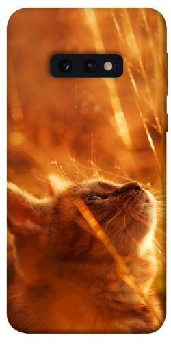 Чехол itsPrint Magic cat для Samsung Galaxy S10e