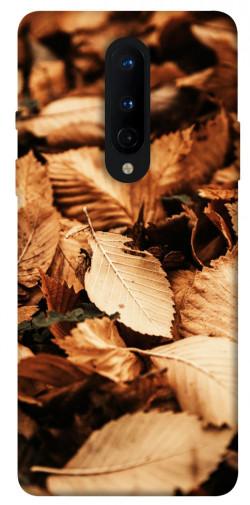 Чехол itsPrint Опавшая листва для OnePlus 8