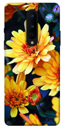 Чехол itsPrint Yellow petals для OnePlus 8