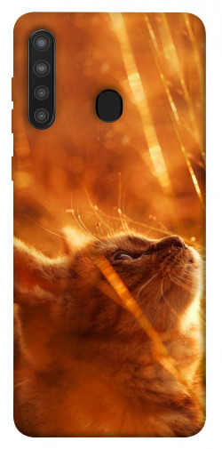 Чехол itsPrint Magic cat для Samsung Galaxy A21