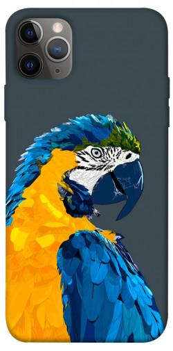 """Чехол itsPrint Попугай для Apple iPhone 12 Pro (6.1"""")"""