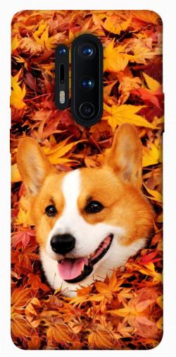 Чехол itsPrint Корги в листьях для OnePlus 8 Pro