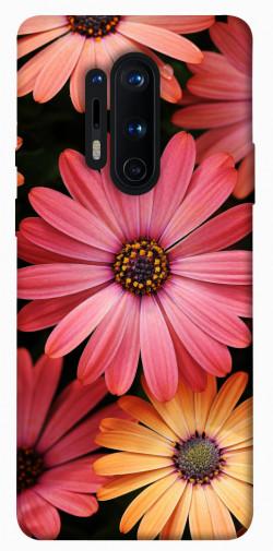 Чехол itsPrint Осенние цветы для OnePlus 8 Pro