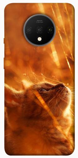 Чехол itsPrint Magic cat для OnePlus 7T