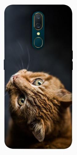 Чехол itsPrint Рыжий кот для OPPO F11 / A9 / A9X