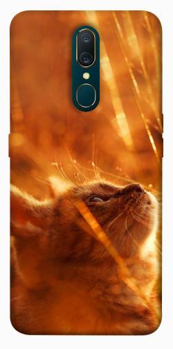 Чехол itsPrint Magic cat для OPPO F11 / A9 / A9X