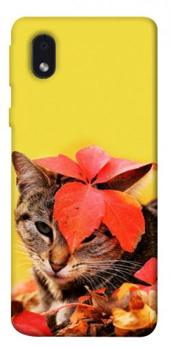 Чехол itsPrint Осенний котик для Samsung Galaxy M01 Core / A01 Core