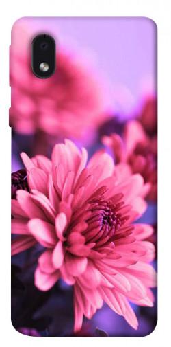 Чехол itsPrint Нежная хризантема для Samsung Galaxy M01 Core / A01 Core