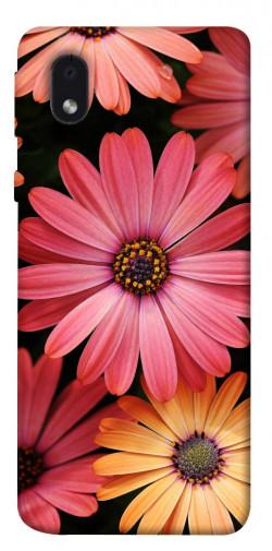 Чехол itsPrint Осенние цветы для Samsung Galaxy M01 Core / A01 Core
