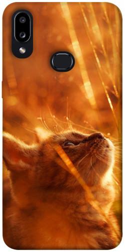 Чехол itsPrint Magic cat для Samsung Galaxy A10s