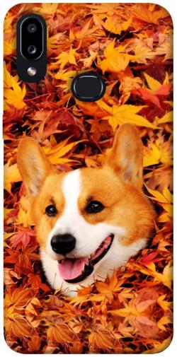 Чехол itsPrint Корги в листьях для Samsung Galaxy A10s
