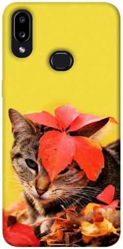 Чехол itsPrint Осенний котик для Samsung Galaxy A10s