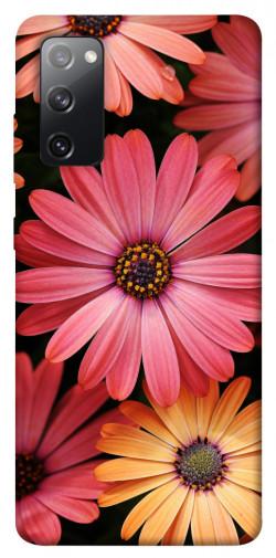 Чехол itsPrint Осенние цветы для Samsung Galaxy S20 FE