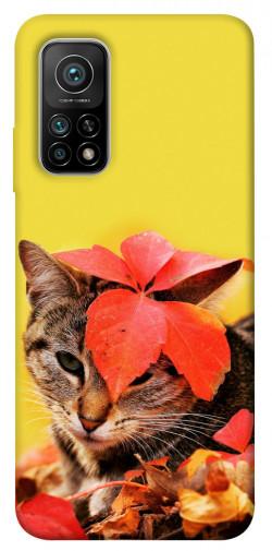 Чехол itsPrint Осенний котик для Xiaomi Mi 10T Pro