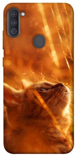 Чехол itsPrint Magic cat для Samsung Galaxy A11