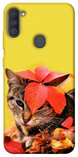 Чехол itsPrint Осенний котик для Samsung Galaxy A11