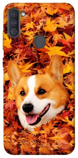 Чехол itsPrint Корги в листьях для Samsung Galaxy A11