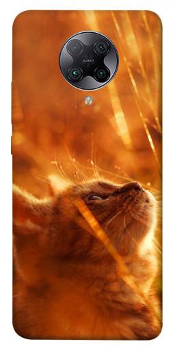 Чехол itsPrint Magic cat для Xiaomi Redmi K30 Pro / Poco F2 Pro