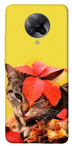 Чехол itsPrint Осенний котик для Xiaomi Redmi K30 Pro / Poco F2 Pro