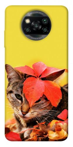 Чехол itsPrint Осенний котик для Xiaomi Poco X3 NFC