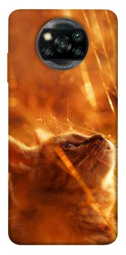 Чехол itsPrint Magic cat для Xiaomi Poco X3 NFC