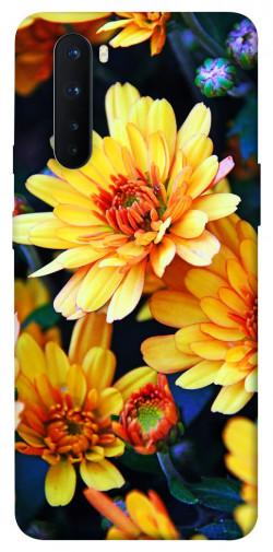 Чехол itsPrint Yellow petals для OnePlus Nord