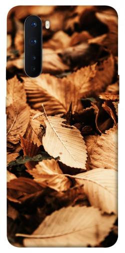 Чехол itsPrint Опавшая листва для OnePlus Nord
