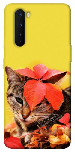 Чехол itsPrint Осенний котик для OnePlus Nord