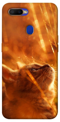 Чехол itsPrint Magic cat для Oppo A5s / Oppo A12