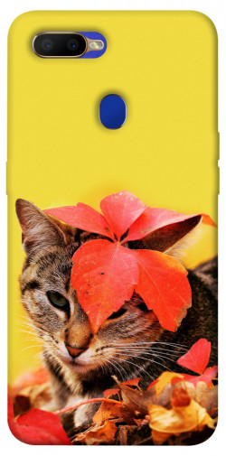 Чехол itsPrint Осенний котик для Oppo A5s / Oppo A12