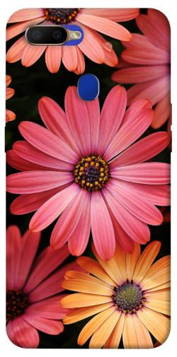 Чехол itsPrint Осенние цветы для Oppo A5s / Oppo A12
